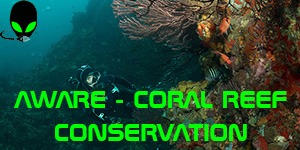 AWARE_coralreef
