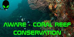 AWARE_coralreef